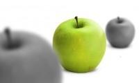 Les qualités pour agir en univers concurrentiel